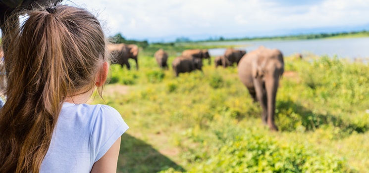 Inteletravel-Blog-5-Musts-on-Your-Trip-to-Africa