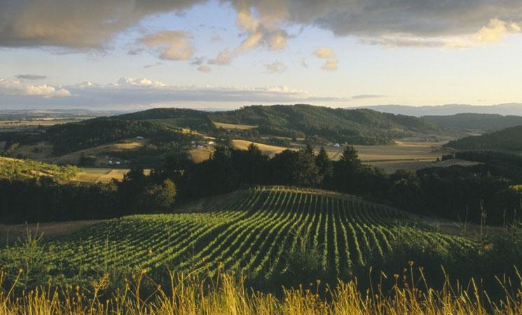 Willamette Valley Oregon