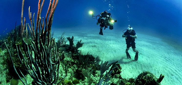Inteletravel-Blog-Curacao-Divers